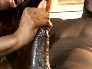 brown lady licking cock